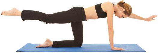 Enfrente Lifting de brazos y piernas