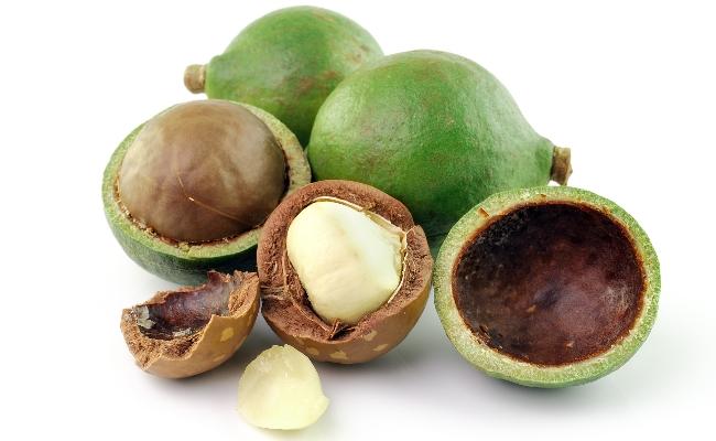 Las nueces macadamia