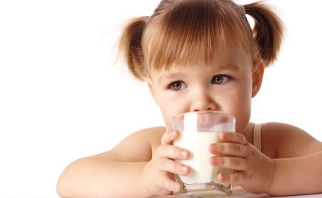 Productos lácteos y calcio