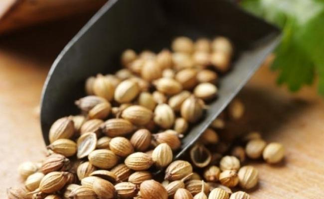 Semillas de coriandro