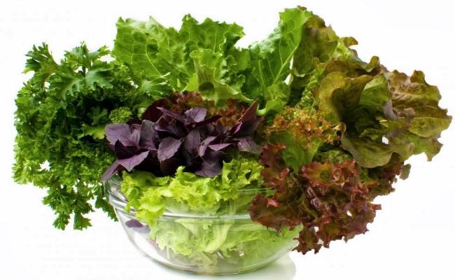 verduras de hoja verde oscuro
