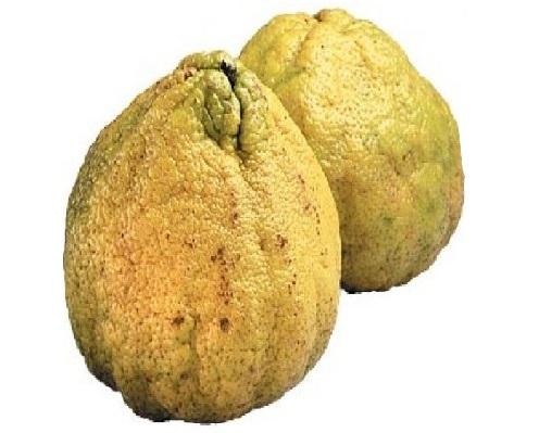 Beneficios de la fruta Ugli