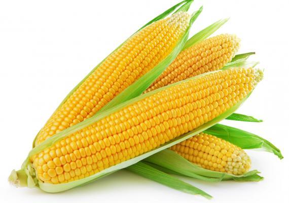 Beneficios del maíz dulce