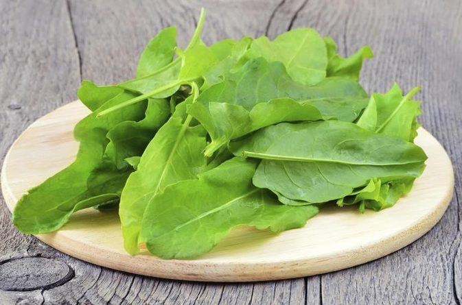 Beneficios para la salud de hojas de Sorrel