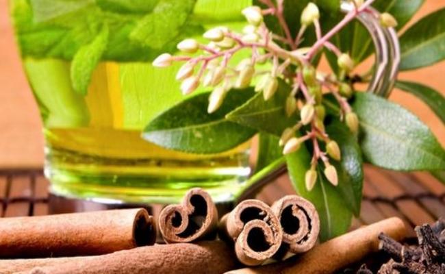 La canela y té verde