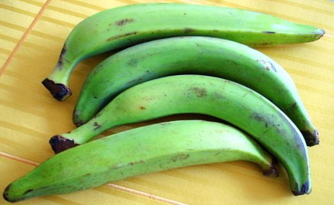 Plátanos inmaduros