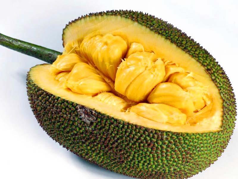 Sorprendentes Beneficios para la Salud de Jackfruit
