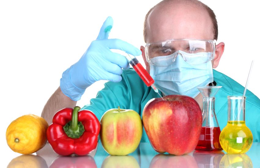 razones para evitar el consumo de OGM