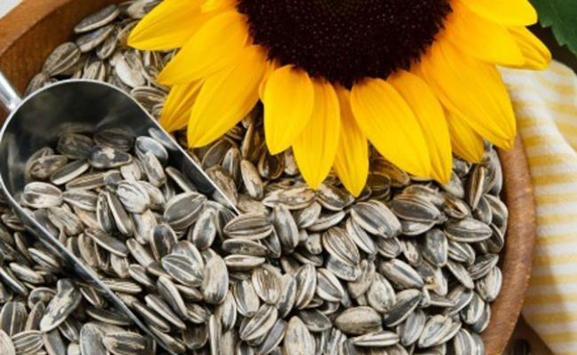 Combinación de las semillas como una curación
