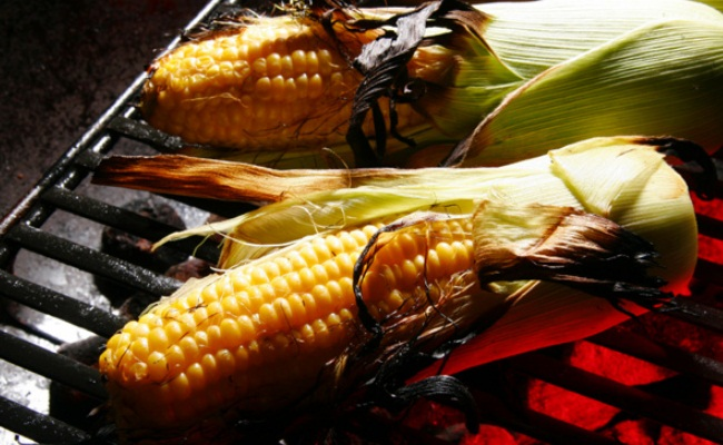 maíz a la parrilla en la mazorca