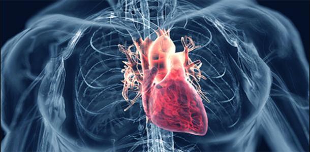 15 Superalimentos para bajar la presión arterial alta