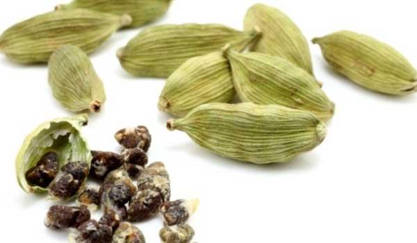 Semillas de Cassia