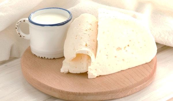 Yogur y queso