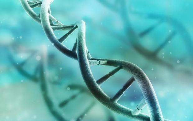 Genes y acne